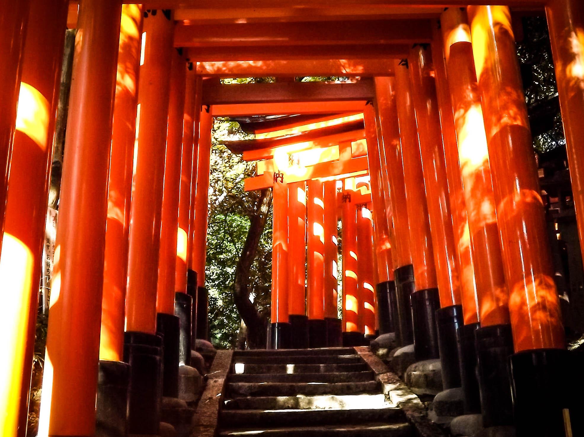 Red torii at Fushimi Inari Jinja