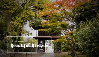 beautiful Hirosaki