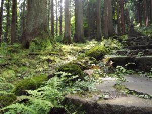 Japan's Sacred Mountains