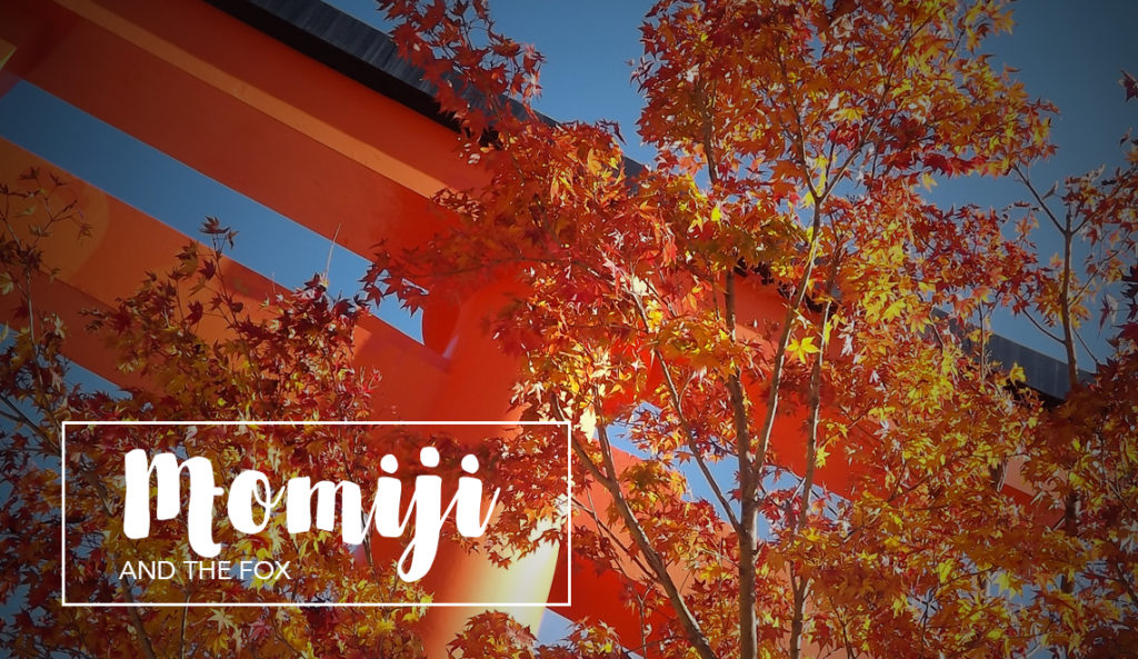 Autumn travel: Momiji and red torii at Fushimi Inari, Kyoto Japan